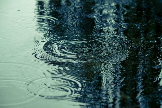 カビ対策梅雨対策